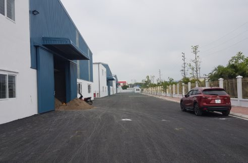 factory for lease in khai son